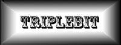 טריפלביט – בניה וקידום אתרים